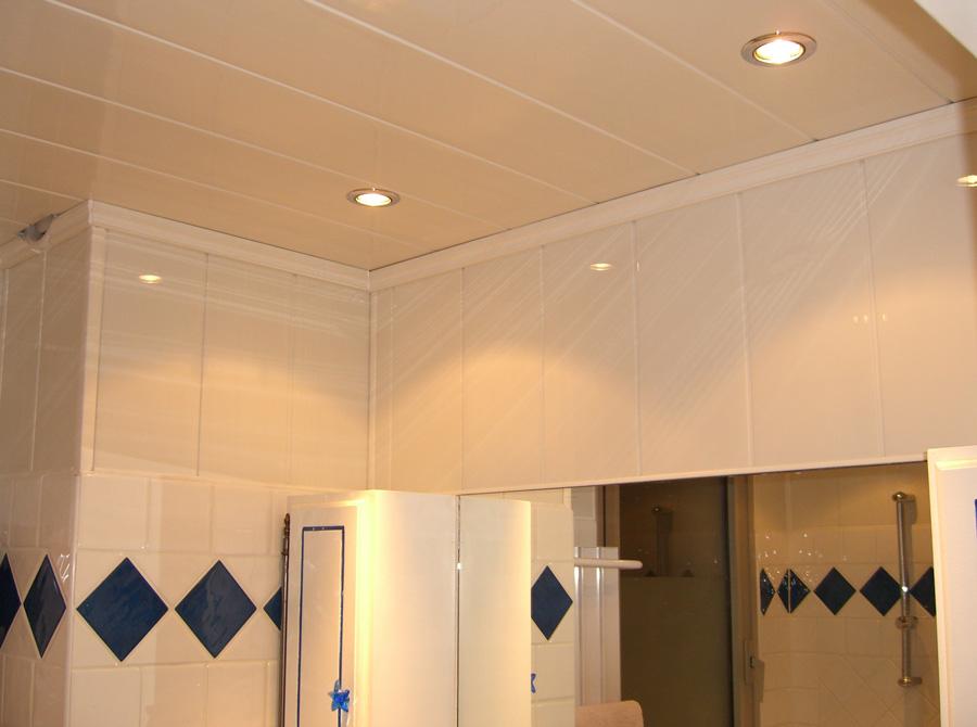 pvc salle de bain plafond. Black Bedroom Furniture Sets. Home Design Ideas